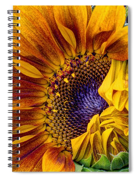 Unfurling Beauty Spiral Notebook