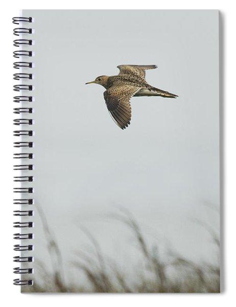 Upland Sandpiper Spiral Notebook