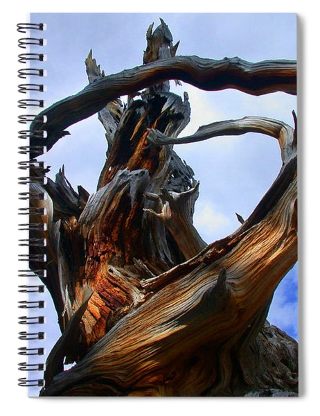 Uprooted Beauty Spiral Notebook