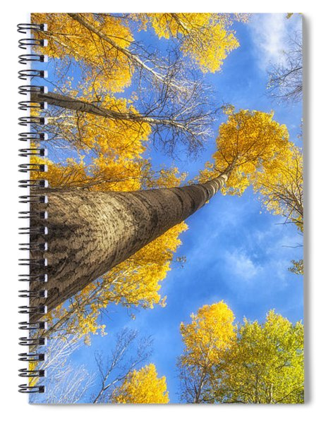 Upward Spiral Notebook