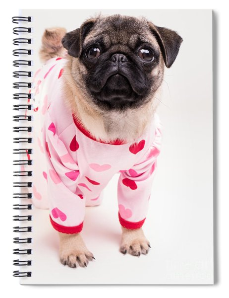 Valentine's Day - Adorable Pug Puppy In Pajamas Spiral Notebook