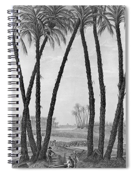 View Of The Ruins Of Memphis Seen From The South East Spiral Notebook