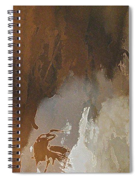Vii - Mirky Wood Spiral Notebook