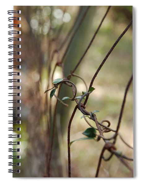 Vine On Rusted Fence Spiral Notebook