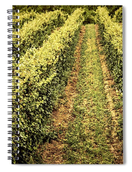 Vines Growing In Vineyard Spiral Notebook