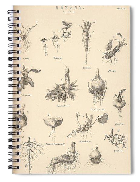 Vintage Botany Spiral Notebook