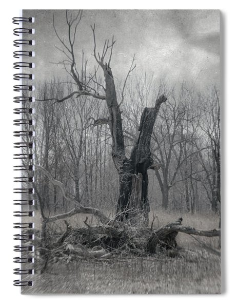 Visitor In The Woods Spiral Notebook