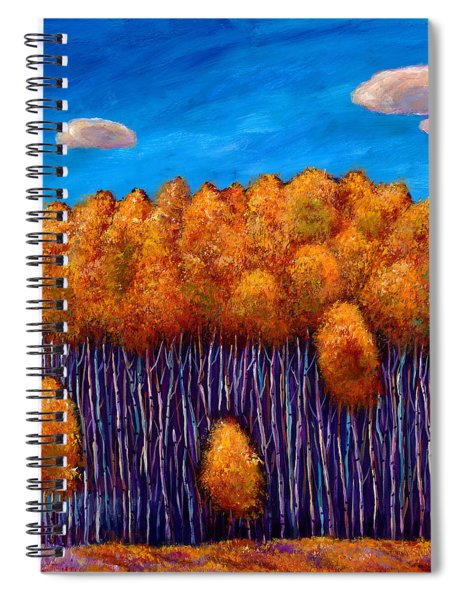 Wait And See Spiral Notebook
