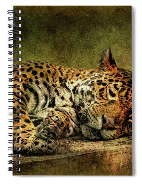 Wake Up Sleepyhead Spiral Notebook