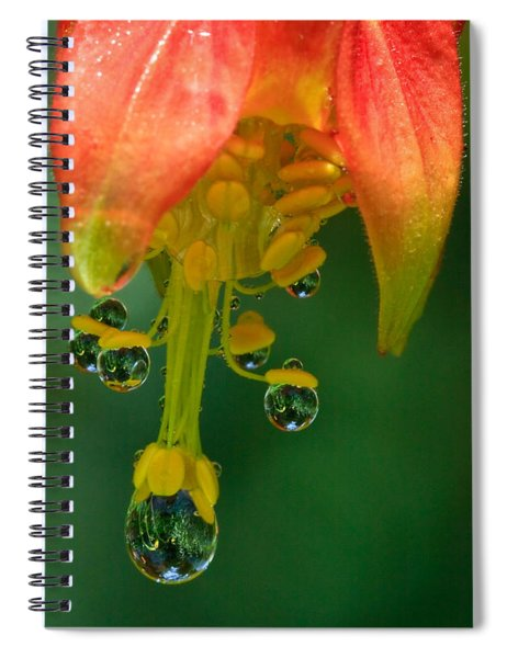 Water Droplets Spiral Notebook
