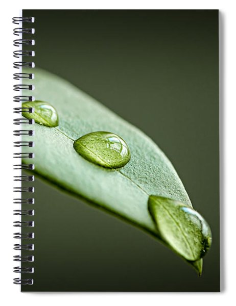 Water Drops On Green Leaf Spiral Notebook