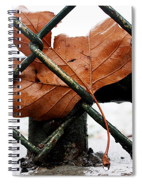 Water Leaf Spiral Notebook