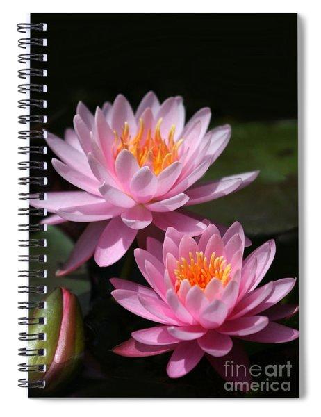 Water Lilies Love The Sun Spiral Notebook
