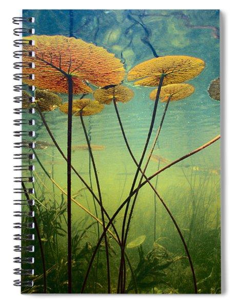 Water Lilies Spiral Notebook