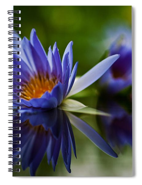 Water Lily Reflections Spiral Notebook