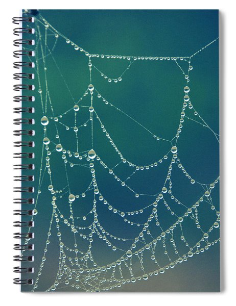 Water Web Spiral Notebook