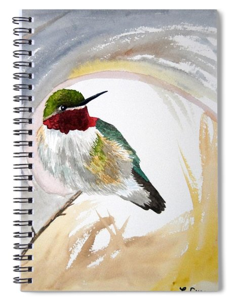 Watercolor - Broad-tailed Hummingbird Spiral Notebook
