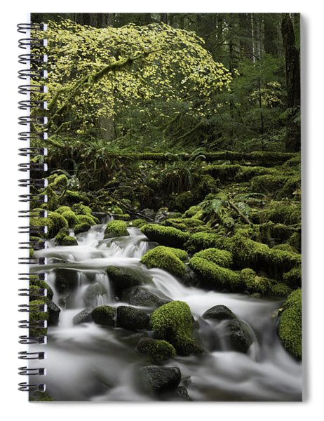 Waterfall In The Fall Spiral Notebook