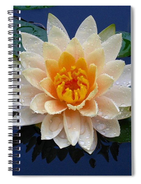 Waterlily After A Shower Spiral Notebook
