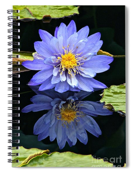 Waterlily And Reflection Spiral Notebook