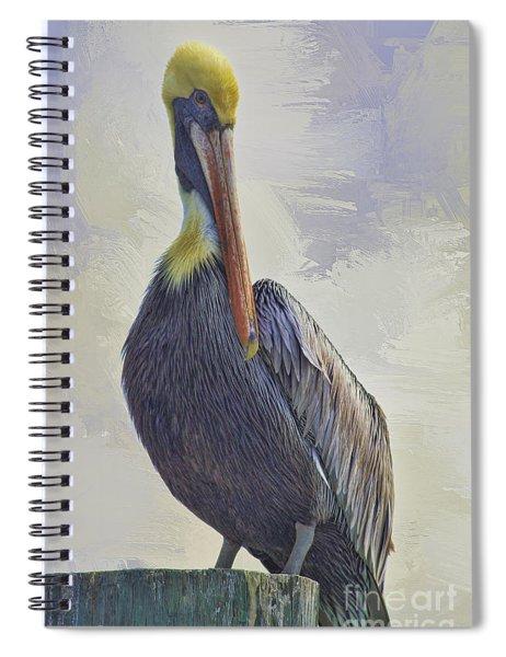 Waterway Pelican Spiral Notebook