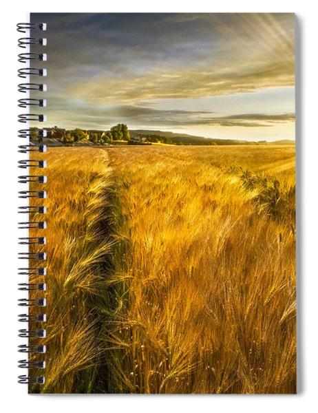 Waves Of Grain Spiral Notebook