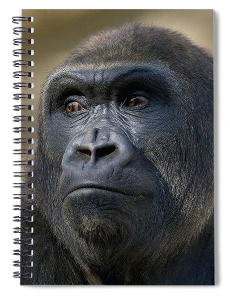 Western Lowland Gorilla Portrait Spiral Notebook