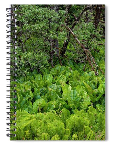 Western Skunk Cabbages Lysichiton Spiral Notebook