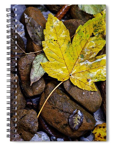 Wet Autumn Leaf On Stones Spiral Notebook