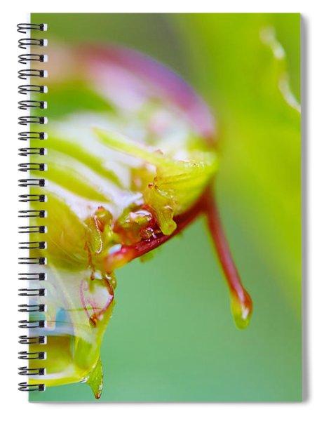 Wet Grape Leaf  Spiral Notebook