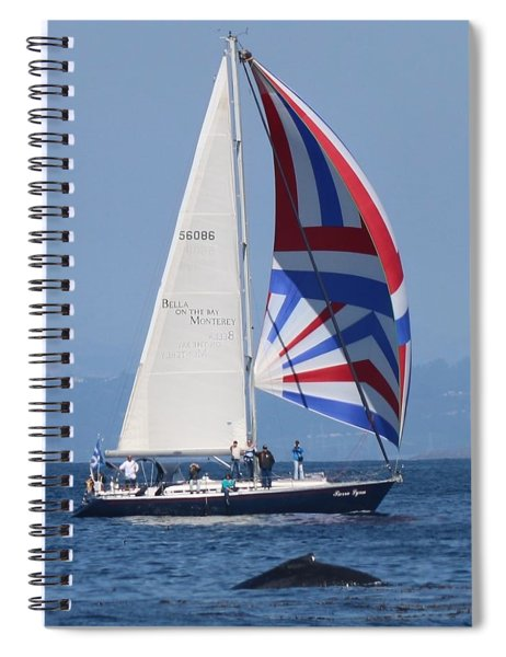 Whale Watching 1 Spiral Notebook