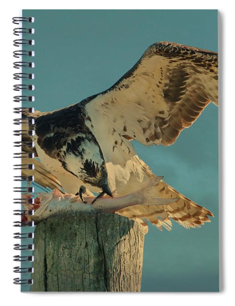 What A Meal Spiral Notebook