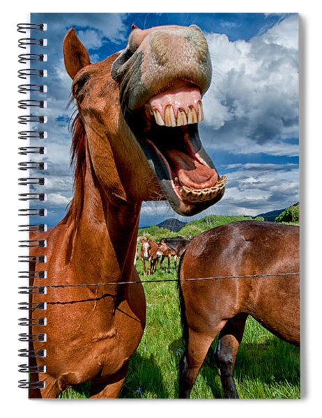 What's So Funny Spiral Notebook