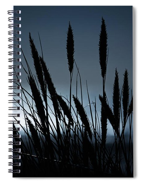 Wheat Stalks On A Dune At Moonlight Spiral Notebook