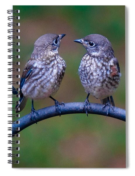 Spiral Notebook featuring the photograph When's Dad Coming Back? by Robert L Jackson