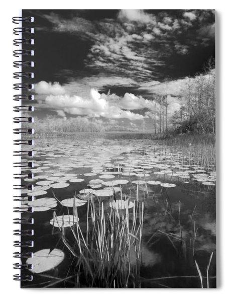 Where Angels Walk Spiral Notebook