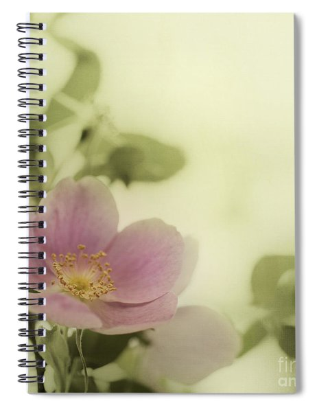 Where The Wild Roses Grow Spiral Notebook