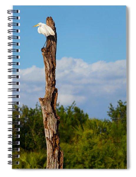 White Crane On A Dead Tree, Boynton Spiral Notebook