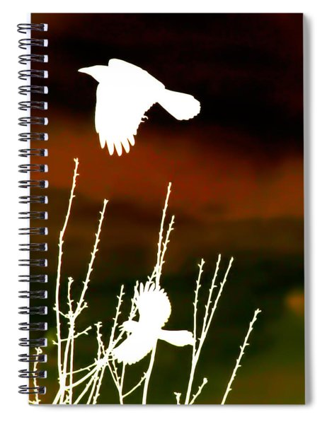 White Crow And The Bluejay Spiral Notebook