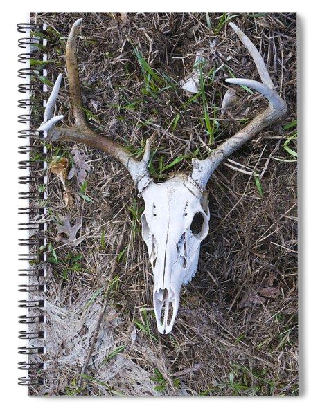 White Deer Skull In Grass Spiral Notebook
