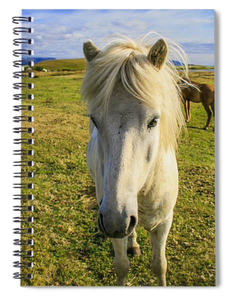 White Icelandic Pony Spiral Notebook