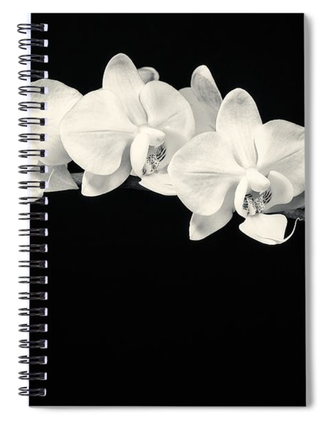 White Orchids Monochrome Spiral Notebook