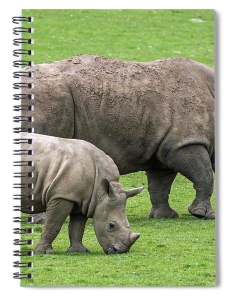 White Rhino 8 Spiral Notebook