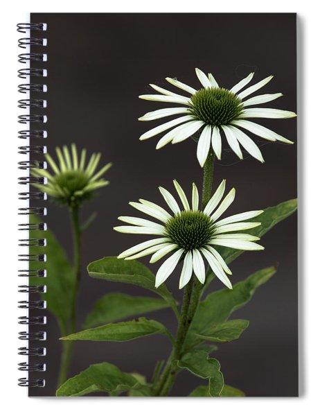 White Swans Spiral Notebook