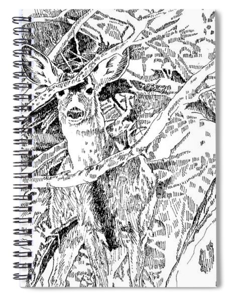 White-tail Encounter Spiral Notebook