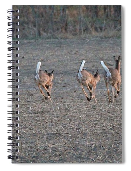 White Tailed Deer Running Spiral Notebook