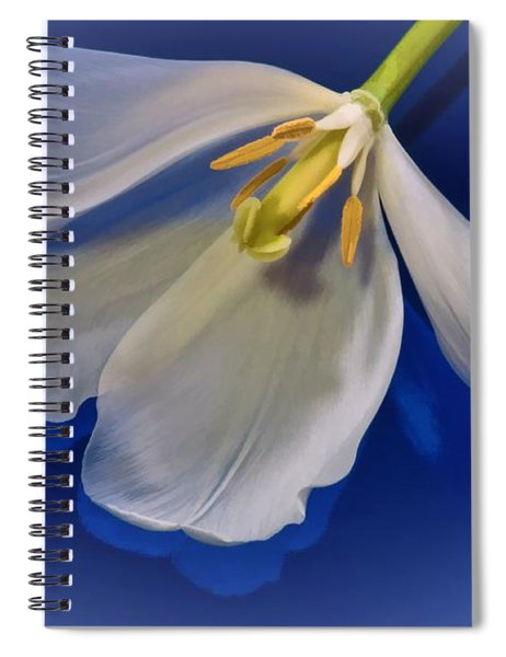 White Tulip On Blue Spiral Notebook