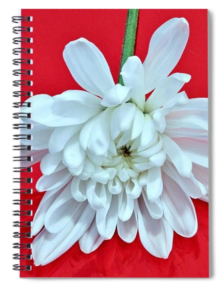 White Flower On Bright Red Background Spiral Notebook