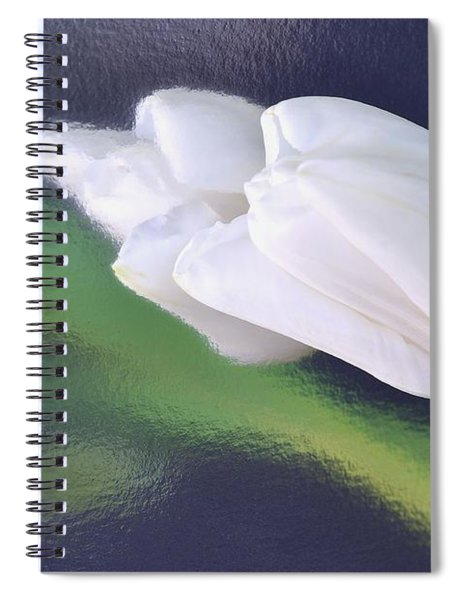 White Tulip Reflected In Dark Blue Water Spiral Notebook