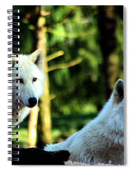 White Wolves Spiral Notebook